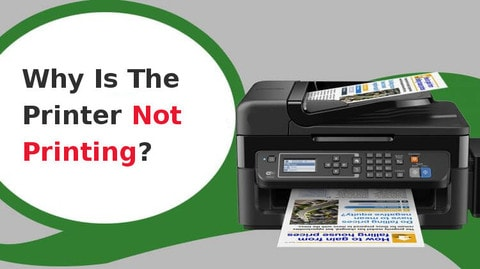 why is the printer not printing